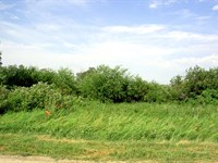 40 Acres With Year Round Trout Str : Ulen : Clay County : Minnesota