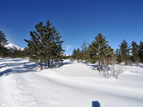 3963217 - Postcard Perfect Setting : Buena Vista : Chaffee County : Colorado