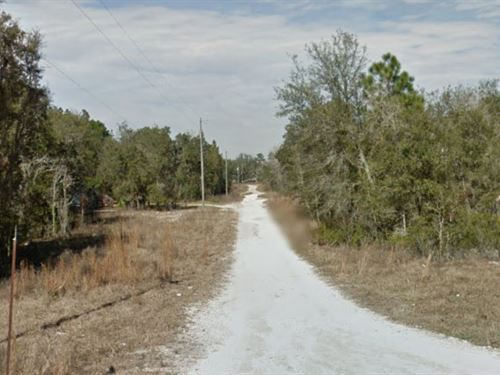 Levy County, Florida $6,000 : Bronson : Levy County : Florida
