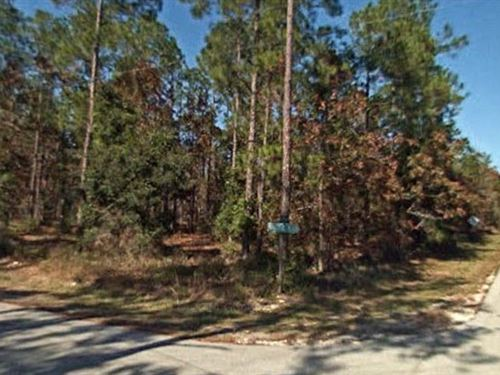 Marion County, Florida $17,000 : Dunnellon : Marion County : Florida