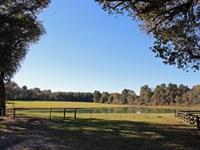 Poor S Ranch : Montgomery : Montgomery County : Texas