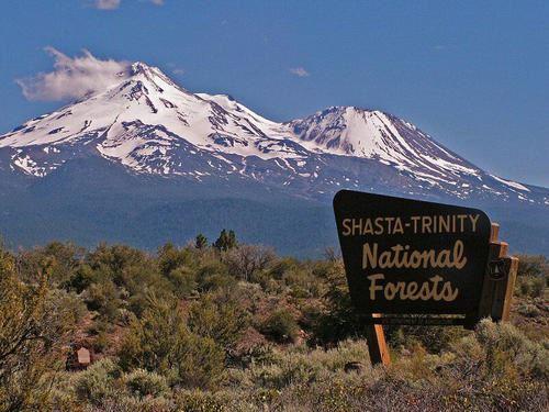 California 20 Ac Mining Claim Creek : Weaverville : Trinity County : California
