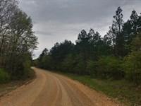 32.3 +/- Wooded Acres : Marmaduke : Greene County : Arkansas