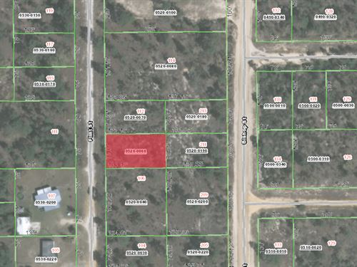 Buildable Land For Sale By Owner : Interlachen : Putnam County : Florida