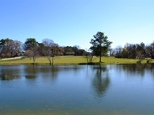 Kathmoor Drive 5 Acres : Montgomery : Alabama