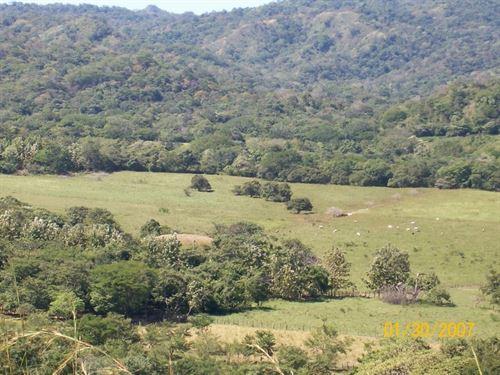 Farm For Eco Lodge Or Equestrian : Guanacaste : Costa Rica