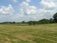Farm, Hunting, Woods, Pasture : Spencer : Van Buren County : Tennessee
