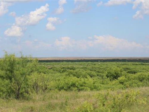 Cattle Ranch Auction - 3767 Acres : Electra : Wichita County : Texas
