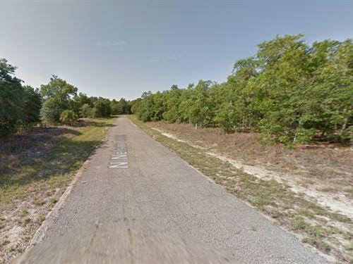 Buildable Lot For Sale : Citrus Springs : Citrus County : Florida