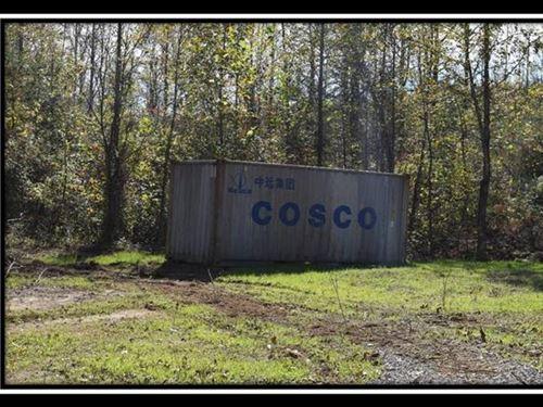 Beautiful 35 Acre Country Setting : Patriot : Gallia County : Ohio