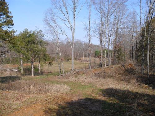 41.09 Ac. Of Woods With Open Areas : Coldwater : Tate County : Mississippi