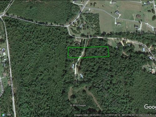 3+/- Acre Vacant Lot : Waynesboro : Wayne County : Mississippi