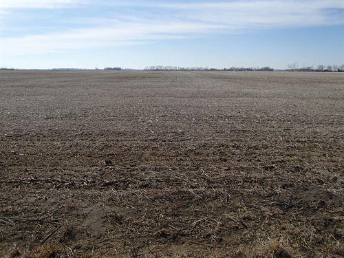 303.2 Acres - Sd Farm Land : Britton : Marshall County : South Dakota