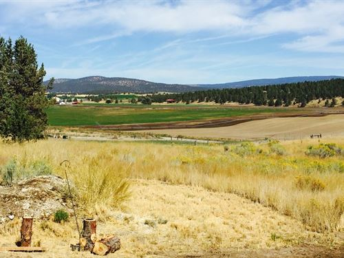 Country Living 5 Miles From Town : Bonanza : Klamath County : Oregon