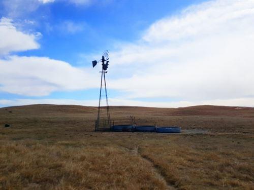 Eastern Lincoln County Grass : Brady : Lincoln County : Nebraska