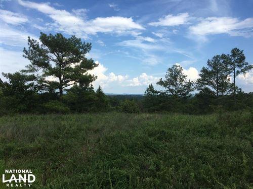 Pritchett Road Tract : Kimberly : Jefferson County : Alabama
