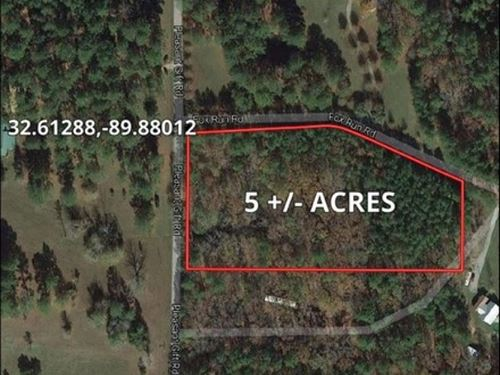 5 Acres In Madison County : Madison County : Mississippi