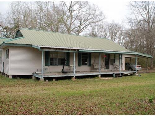 4.27 Acres Faller Rd. Tickfaw, La : Tickfaw : Tangipahoa Parish : Louisiana