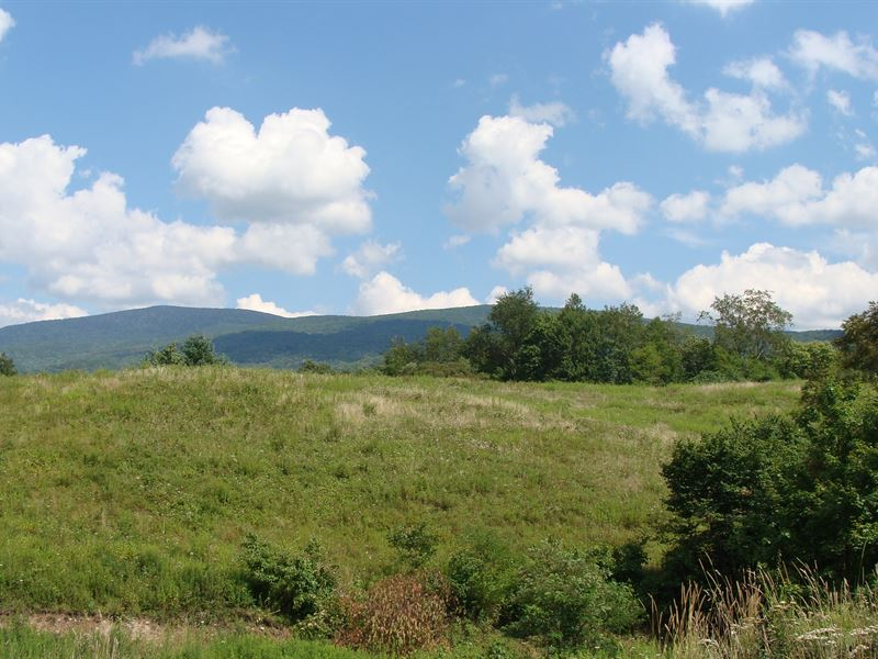Va Farm Bordering National Forest : Land for Sale : Troutdale : Smyth  County : Virginia