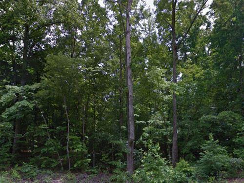 Gaston Co, Nc $275,000 Neg Both : Kings Mountain : Gaston County : North Carolina