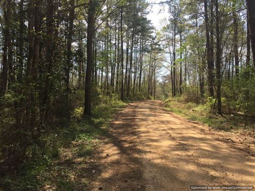 Country Living At Its Best : Wesson : Lincoln County : Mississippi