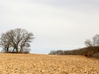 Beautiful Rolling Hillside : Brooklyn : Green County : Wisconsin