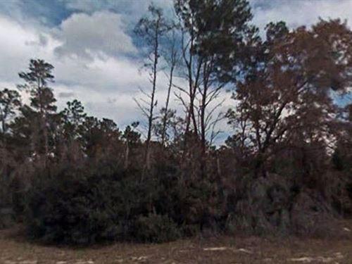 Marion County, Florida $17,500 Neg. : Ocklawaha : Marion County : Florida