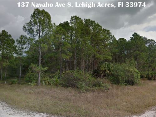 Lee County, Florida $12,500 Each : Lehigh Acres : Lee County : Florida