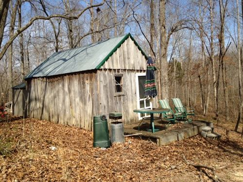 Summers 50 Acres : Bonnieville : Hart County : Kentucky