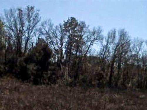 Marion Co, Fl $40,000 Neg All 3 : Ocala : Marion County : Florida
