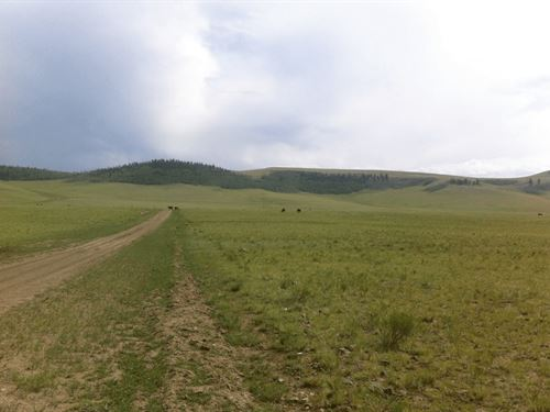 4.76 Acres Near Antero Reservoir : Hartsel : Park County : Colorado