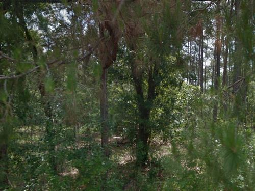 Pasco County, Florida $175,000 Neg : Wesley Chapel : Pasco County : Florida