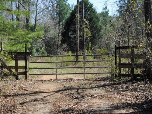 Providence Road Tract : Linden : Marengo County : Alabama