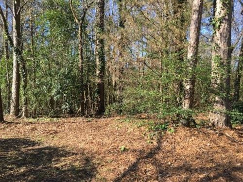 2.38 Acres In Rankin County : Brandon : Rankin County : Mississippi