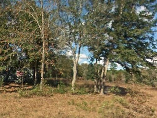 Marion County, Florida $60,000 : Dunnellon : Marion County : Florida