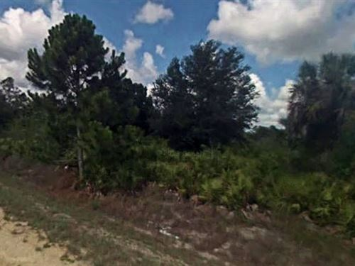 Lee County, Fl $59,999 Neg For Both : Lehigh Acres : Lee County : Florida