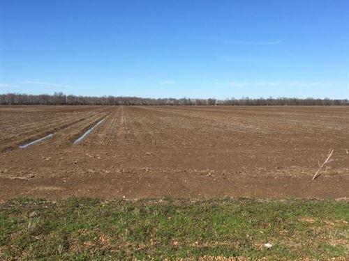 Fitzhugh Road Farm : Drew : Sunflower County : Mississippi