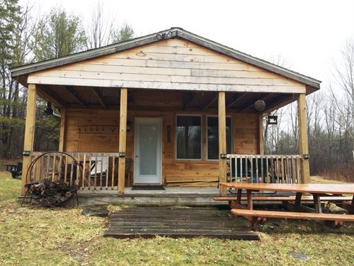 12 Acres Furnished Cabin Amity Ny : Amity : Allegany County : New York