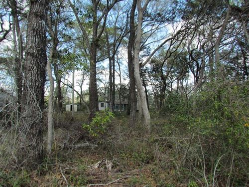 2 Buildable Lots-0.93 Acres 773490 : Chiefland : Levy County : Florida