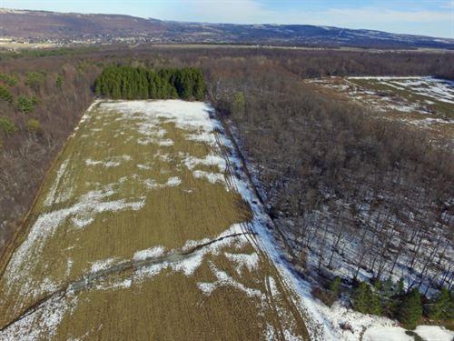 13 Acres Dansville Ny Farmland : Ossian : Livingston County : New York