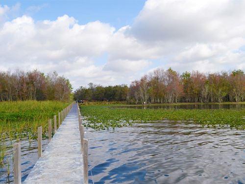 Lake Marian Lakefront Hunting & Rec : Kenansville : Osceola County : Florida