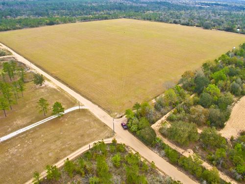 40 Acre Pasture With Hay Lease : Fountain : Bay County : Florida