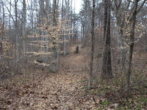 Davis Chapel Rd - 5 Acres : Logan : Hocking County : Ohio