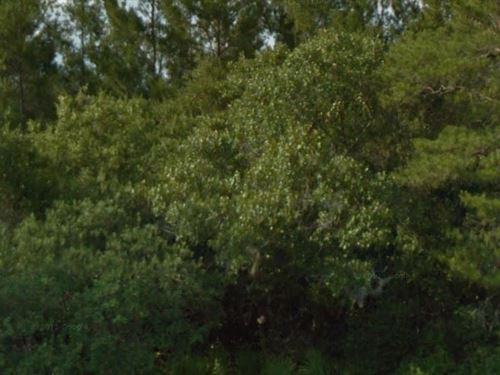 Marion County, Florida $12,300 Neg : Fort McCoy : Marion County : Florida