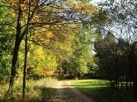 96 Ac Of Beautiful Mature Hardwoods : Dodgeville : Iron County : Wisconsin