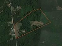 72.25 Acres Great Hunting Or Recrea : Honea Path : Greenville County : South Carolina