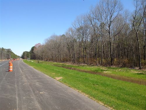 29-042A Highway 14 Elmore Tract : Elmore County : Alabama