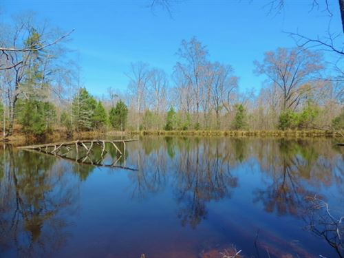 Pastureland, Timber, And 3 Ponds : Washington : Wilkes County : Georgia