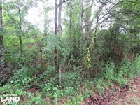 42 Acre Single And Multi Family Zon : Brookhaven : Lincoln County : Mississippi
