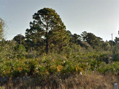 Lee County, Fl $23,500 Neg. : Lehigh Acres : Lee County : Florida